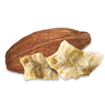 kakaove-maslo-neprazene-raw-350x350_0