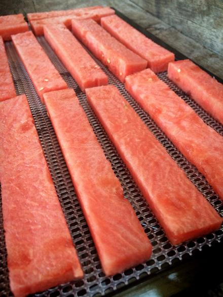 watermelon-leathers (1)