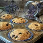 Borůvkové muffiny (raw gurmet, vegan, bez lepku, bez cukru)