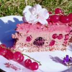 Sezónní ovocný dort (raw, vegan, bez lepku a laktózy)